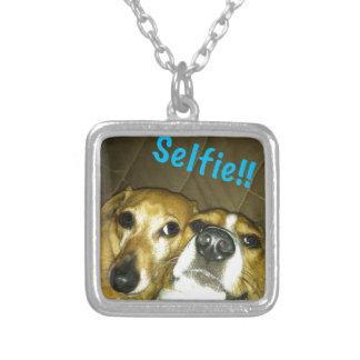 Un dachshund y un beagle que toman un selfie colgante cuadrado