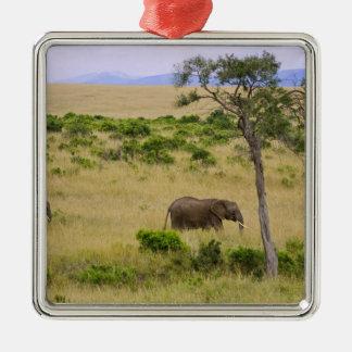 Un elefante africano que pasta en los campos de lo ornamento para arbol de navidad