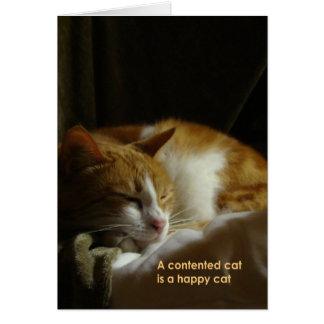 Un gato contento… tarjeta