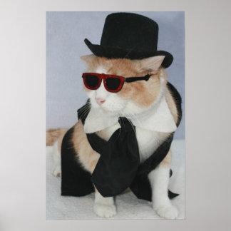 Un gato vestido sostenido póster
