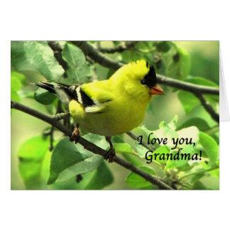 Un Goldfinch para la abuela el el día de madre Tarjeta De Felicitación
