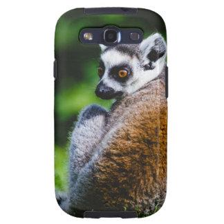 Un Lemur joven, fotografía animal Galaxy S3 Coberturas