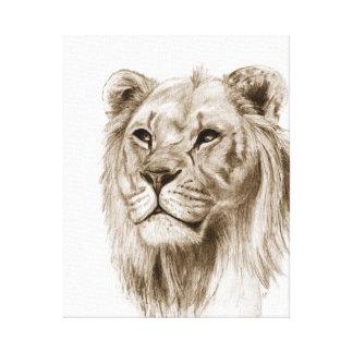 Un león - sin el orgullo, dibujo, arte del