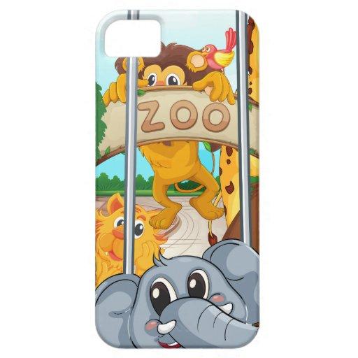 un parque zoológico y los animales iPhone 5 Case-Mate coberturas