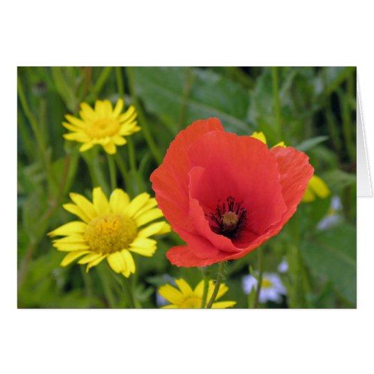 Una amapola brillante, alegre en el prado tarjeta de felicitación