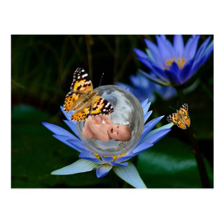 Una burbuja linda de la mariposa del lirio del postal