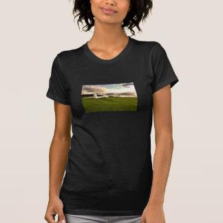 Una camisa del planeador o de dos fotos
