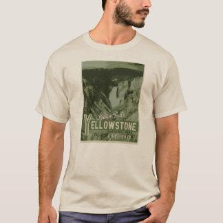 Una camiseta más baja de las caídas del parque