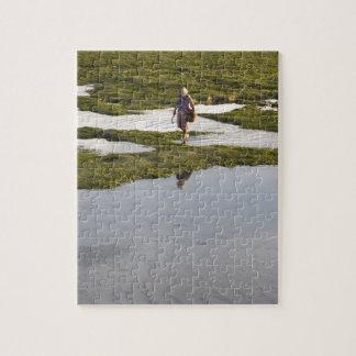 Una escena de la playa de una isla admitida puzzle