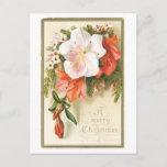Una flor de las Felices Navidad