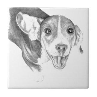 Una historia a decir, un perrito del beagle azulejo cuadrado pequeño
