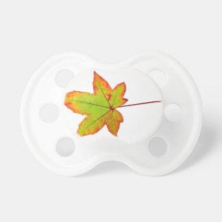 Una hoja de arce colorida en otoño en blanco chupete de bebe