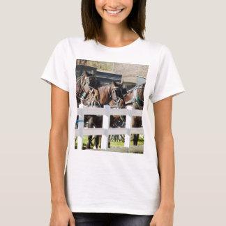 Una línea de caballos de Amish Camiseta