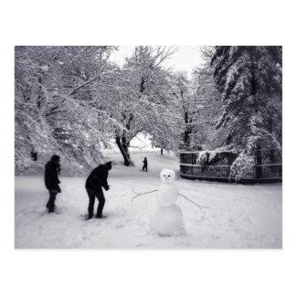 Una lucha de la bola de nieve en Central Park Postal