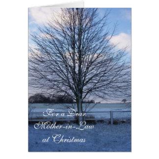 Una nieve de la tarjeta de la suegra de las