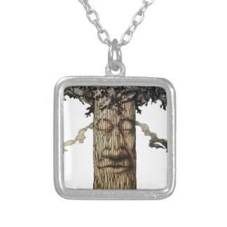 Una página de cubierta poderosa del árbol collar plateado