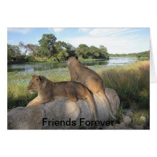 Una tarjeta de la amistad