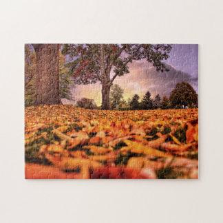 Una visión a través del rompecabezas de las hojas