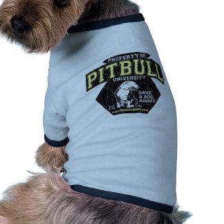 Universidad de PITBULL Camiseta De Perro