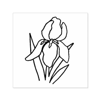 Uno mismo del iris que entinta el sello