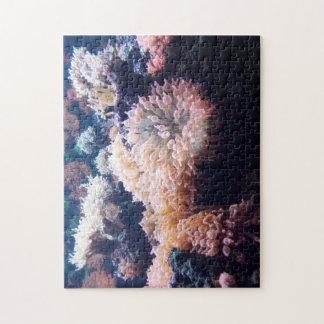 Unterwasser 28 cm x 35,6 cm puzle con box de