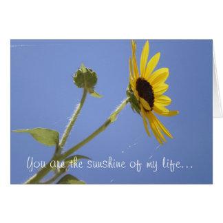 Usted es la sol de mi vida… tarjeta de felicitación
