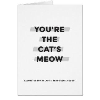 Usted es la tarjeta del maullido del gato
