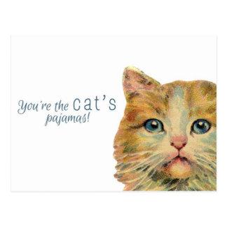 ¡Usted es los pijamas del gato! Postal