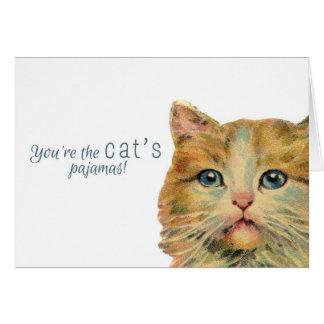 ¡Usted es los pijamas del gato! - Tarjeta de nota