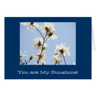 ¡Usted es mi sol! Las tarjetas le aman siempre