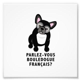 Usted habla el dogo francés lindo foto