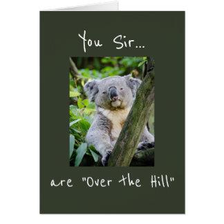 """Usted sir es """"sobre cumpleaños del oso de koala de tarjeta de felicitación"""