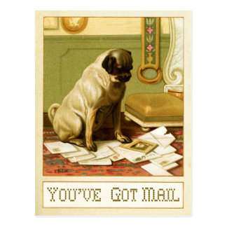 Usted tiene correo postal