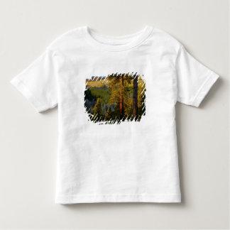 UTAH. Pinos ponderosa y álamo temblón, otoño. Camiseta De Bebé