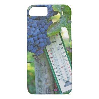 Uvas del Merlot en el la Figeac grave, a del Funda iPhone 7