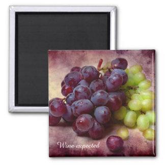 Uvas rojas y verdes imán