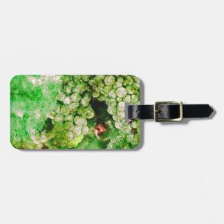 Uvas verdes usadas para hacer el vino etiquetas para maletas
