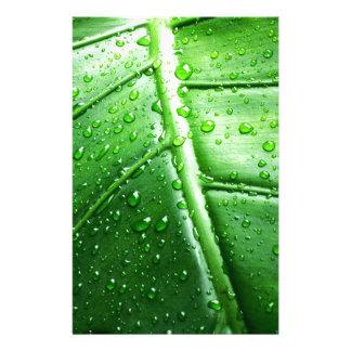va green.jpg papeleria personalizada