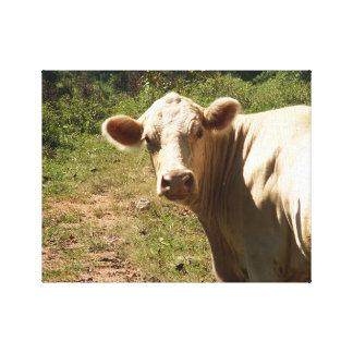 Vaca blanca en la impresión de la lona del pasto
