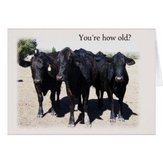 """Vaca chistosa """"que consigue"""" una tarjeta de cumple"""
