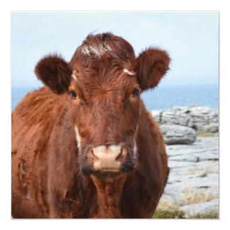 Vaca de Brown Comunicado Personalizado