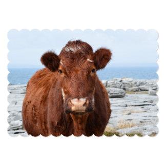 Vaca de Brown Comunicado
