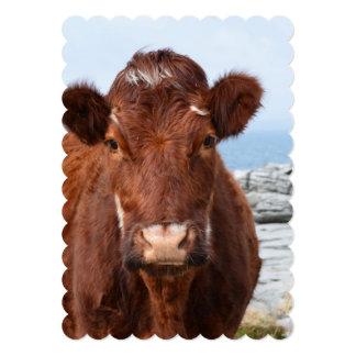 Vaca de Brown Anuncios Personalizados