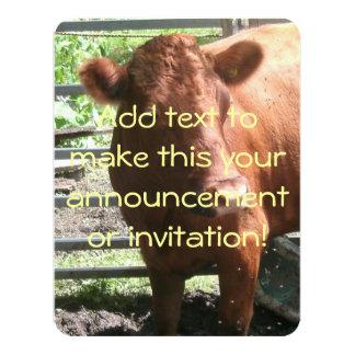 Vaca de la granja de Brown Invitación 10,8 X 13,9 Cm