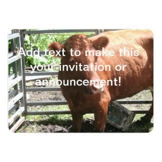 Vaca de la granja de Brown Invitación 12,7 X 17,8 Cm