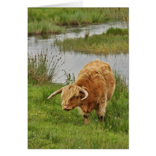 Vaca de la montaña en hierba tarjeta de felicitación