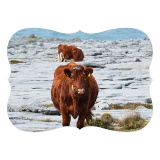 Vaca en Burren Invitación Personalizada