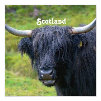 Vaca negra de la montaña invitacion personal