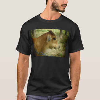 VACA QUEENSLAND RURAL AUSTRALIA CAMISETA