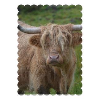 Vaca rubia lanuda de la montaña invitación personalizada